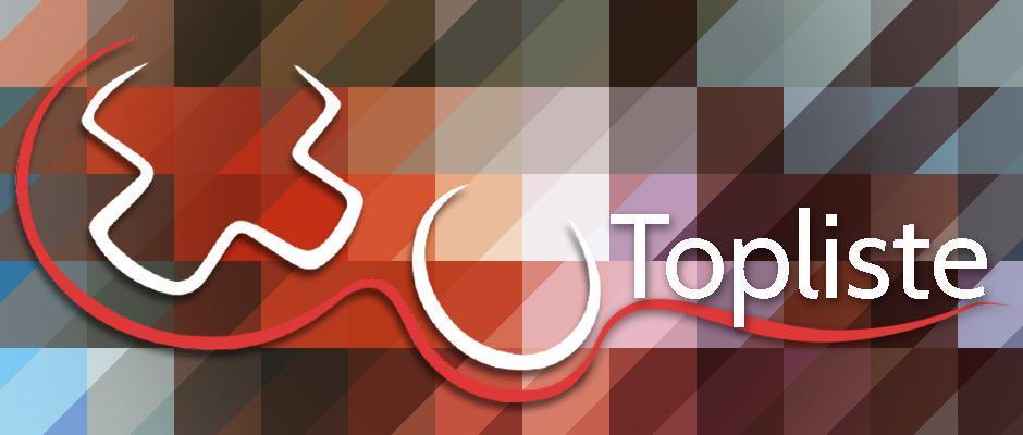 Top 10 Schlechteste PS Vita-Ports